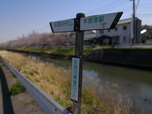 20180325sakurahyousiki.jpgのサムネイル画像