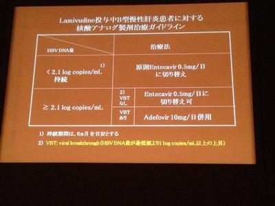 2012年B型慢性肝炎治療ガイドライン案5